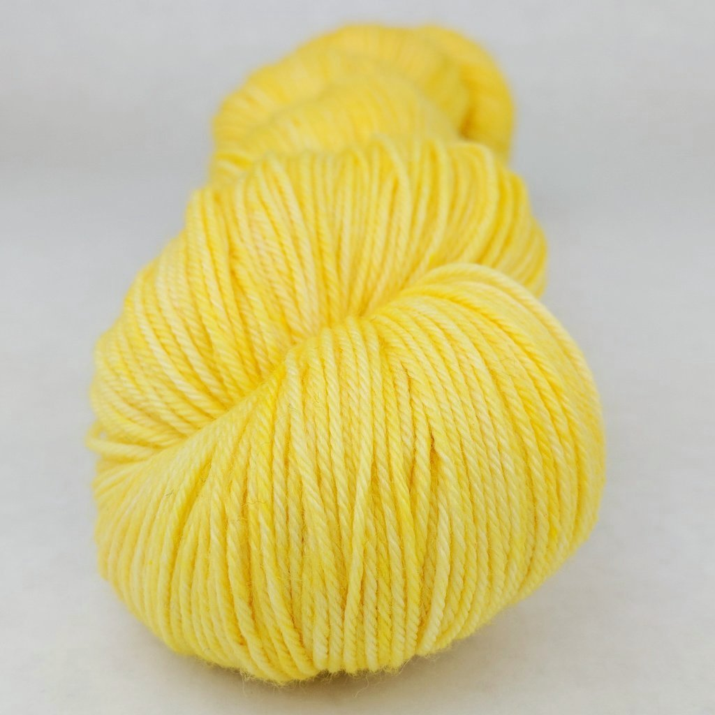 Dizzying Intellect 100g Kettle-Dyed Semi-Solid skein, Greatest of Ease, ready to ship