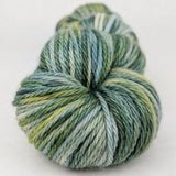 Where The Wild Yarns Are 100g Handpainted skein, Ringmaster, ready to ship