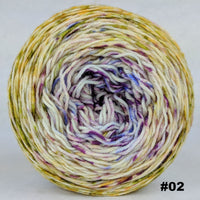 Knitcircus Yarns: Happy Happy Joy Joy 100g Impressionist Gradient, Greatest of Ease, choose your cake, ready to ship yarn