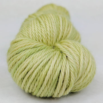 Knitcircus Yarns: Shark Bait 100g Kettle-Dyed Semi-Solid skein, Ringmaster, ready to ship yarn - SALE