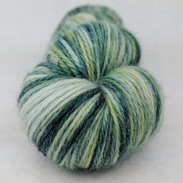 Knitcircus Yarns: Where The Wild Yarns Are 100g Handpainted skein, Corriedale, ready to ship yarn