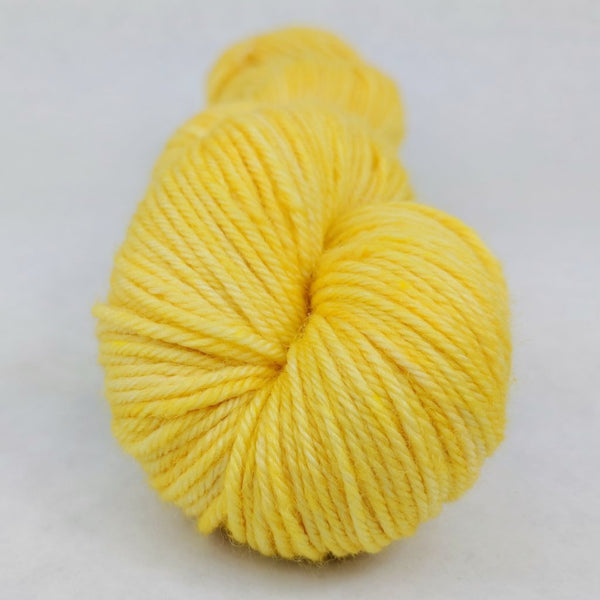 Knitcircus Yarns: Dizzying Intellect 100g Kettle-Dyed Semi-Solid skein, Divine, ready to ship yarn