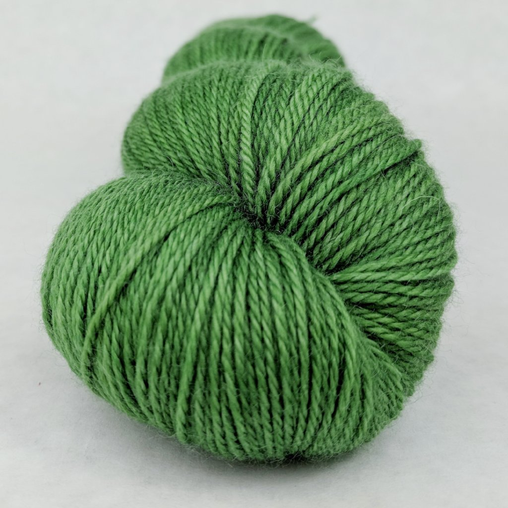 Parakeet 100g Kettle-Dyed Semi-Solid skein, Opulence, ready to ship