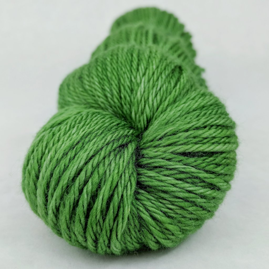 Parakeet 100g Kettle-Dyed Semi-Solid skein, Ringmaster, ready to ship