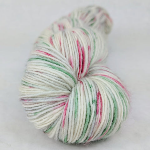 'Tis the Season 100g Speckled Handpaint skein, Spectacular, ready to ship