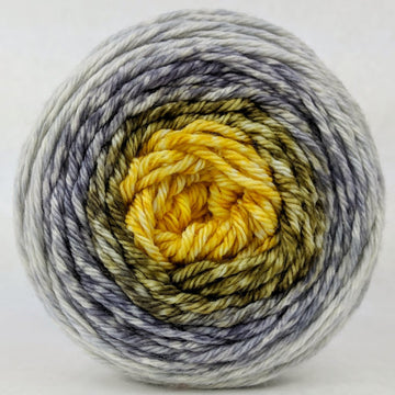 Knitcircus Yarns: Brass and Steam 100g Panoramic Gradient, Ringmaster, ready to ship yarn
