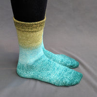 Knitcircus Yarns: Release The Kraken Panoramic Gradient Matching Socks Set, dyed to order yarn