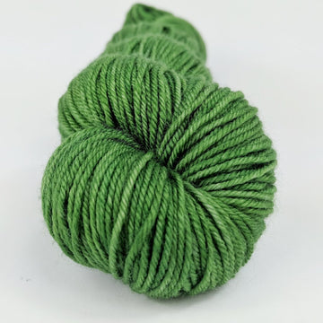 Knitcircus Yarns: Parakeet 100g Kettle-Dyed Semi-Solid skein, Divine, ready to ship yarn - SALE