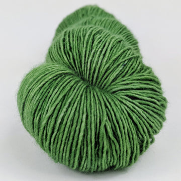 Knitcircus Yarns: Parakeet 100g Kettle-Dyed Semi-Solid skein, Spectacular, ready to ship yarn