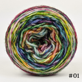 Knitcircus Yarns: Flower Stand 50g Modernist, Breathtaking BFL, choose your cake, ready to ship yarn