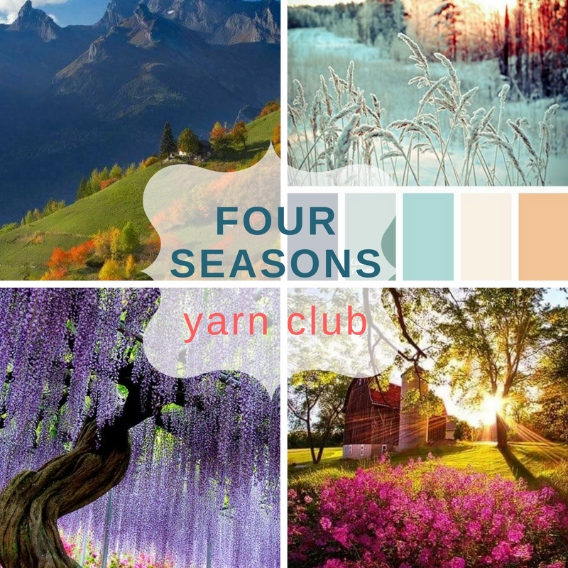 2017 Four Seasons Yarn Club - 4 packages