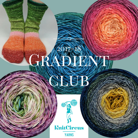 2017 Gradient Yarn Club - 6 packages - CLOSED
