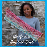 Needle in a Haystack Cowl Kit, ready to ship