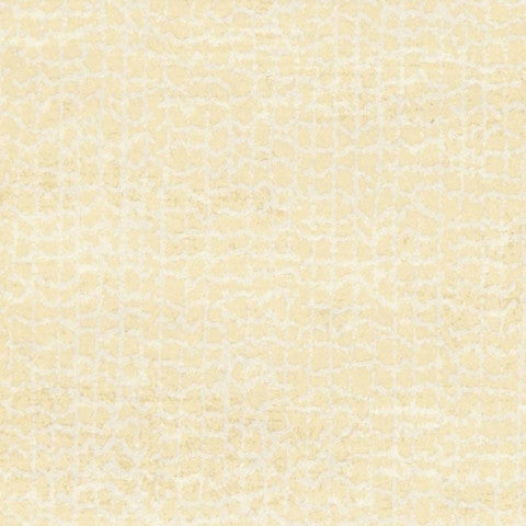 Wemyss Brush - Beige Wallpaper Wallpaper - Decor Rooms - 1