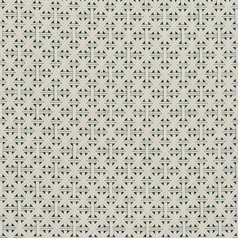 Colony Collection - Cabana Charcoal Fabric by Clarke & Clarke - Decor Rooms