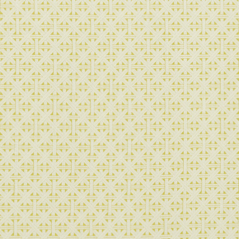 Colony Collection - Cabana Citron Fabric by Clarke & Clarke - Decor Rooms