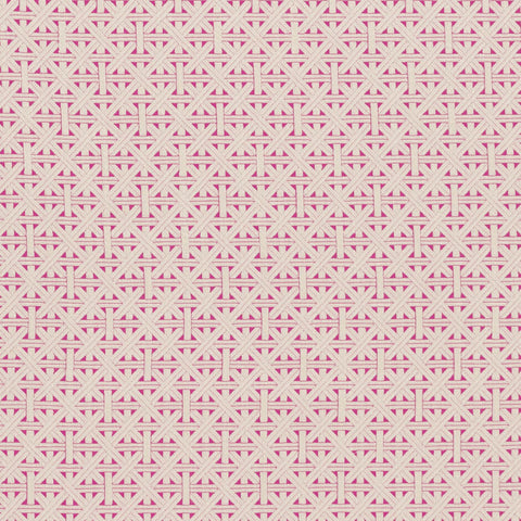 Colony Collection - Cabana Fuchsia Fabric by Clarke & Clarke - Decor Rooms