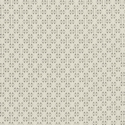 Colony Collection - Cabana Taupe Fabric by Clarke & Clarke - Decor Rooms