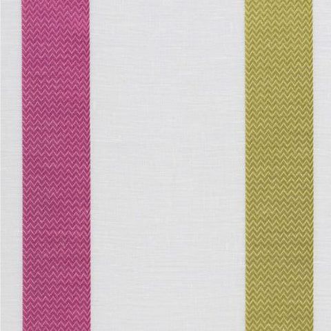 Clarke & Clarke Raso - Lime/Fuchsia Fabrics - Decor Rooms - 1