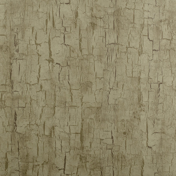 Clarke & Clarke Treebark - Antique Wallpaper - Decor Rooms - 1