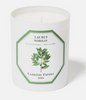 Carriere Freres Laurus Nobilis Candle 185g