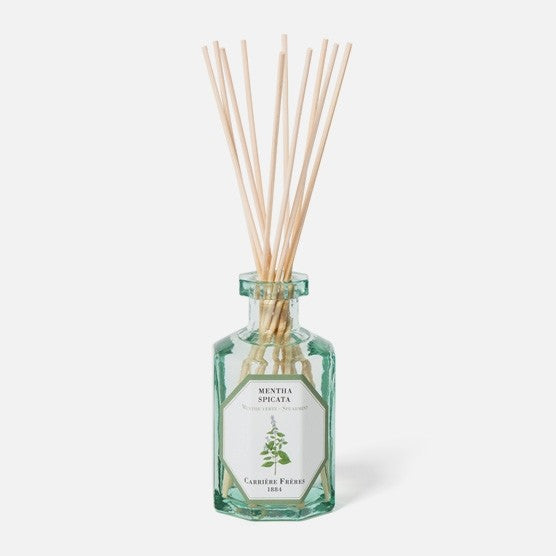 Carriere Freres Spearmint Diffuser