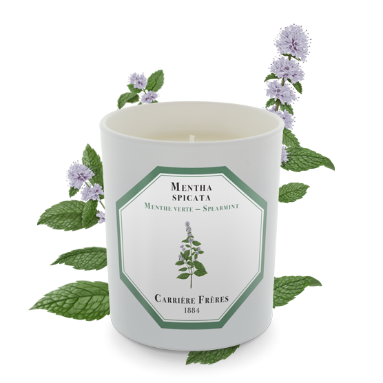 Carriere Freres Spearmint Candle 185g