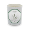 Carriere Freres Tea Plant Candle 185g