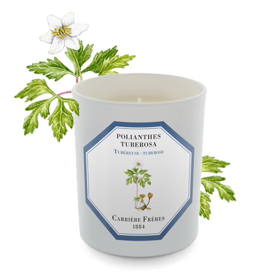 Carriere Freres Tuberose Candle 185g