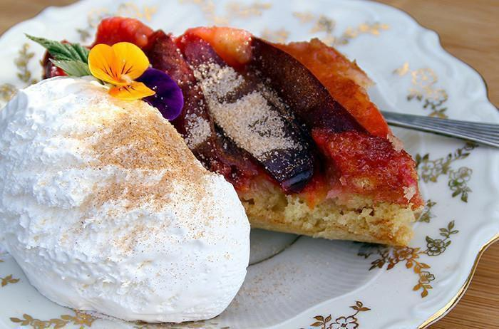 Recipes-Montana Plum Cake Recipe-solar oven recipes