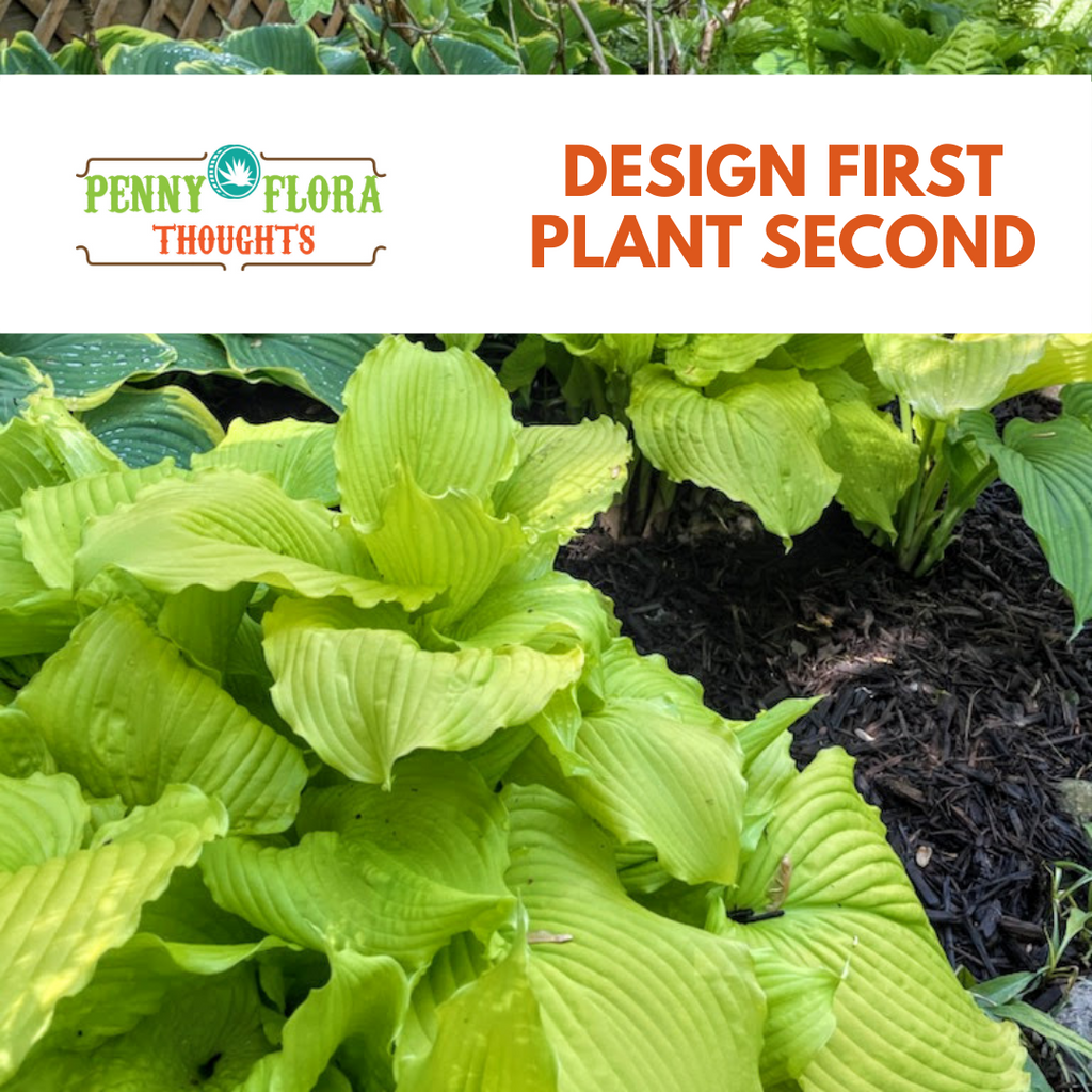 Design First Plant Second