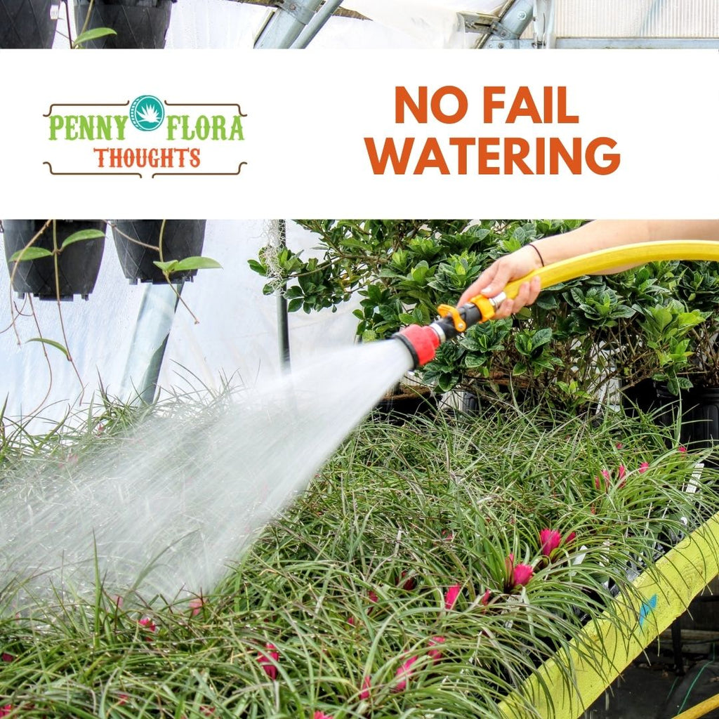 No Fail Watering