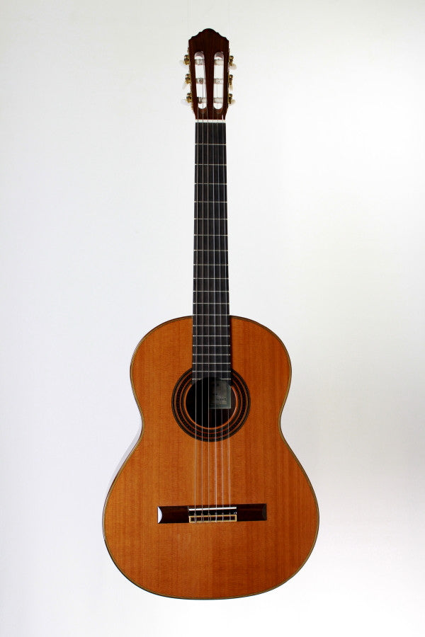 New World Guitars P-650-C