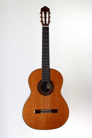 New World Guitars P-650-C Classical Guitar, 2012.
