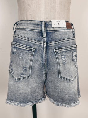 Embroidered Eyelet Yoke Dress in Black