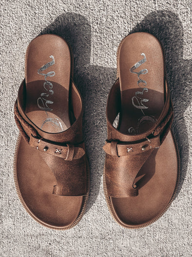 Dex Cami W/ Lace Detail in Black