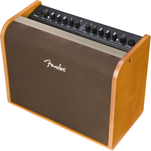 Fender Acoustic 100 Two Channel Acoustic Guitar Amplifier