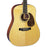 Martin D-16RGT Dreadnought Acoustic Guitar Natural