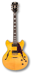 D'Angelico EX-DC Natural
