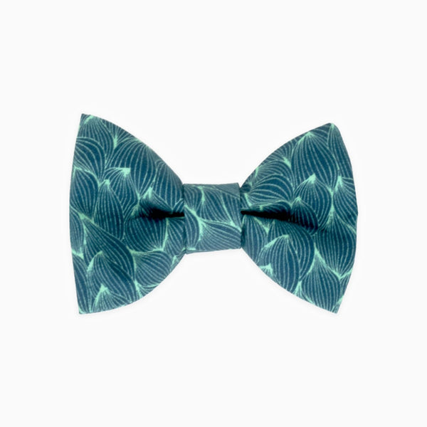 Clendeling Bow Tie