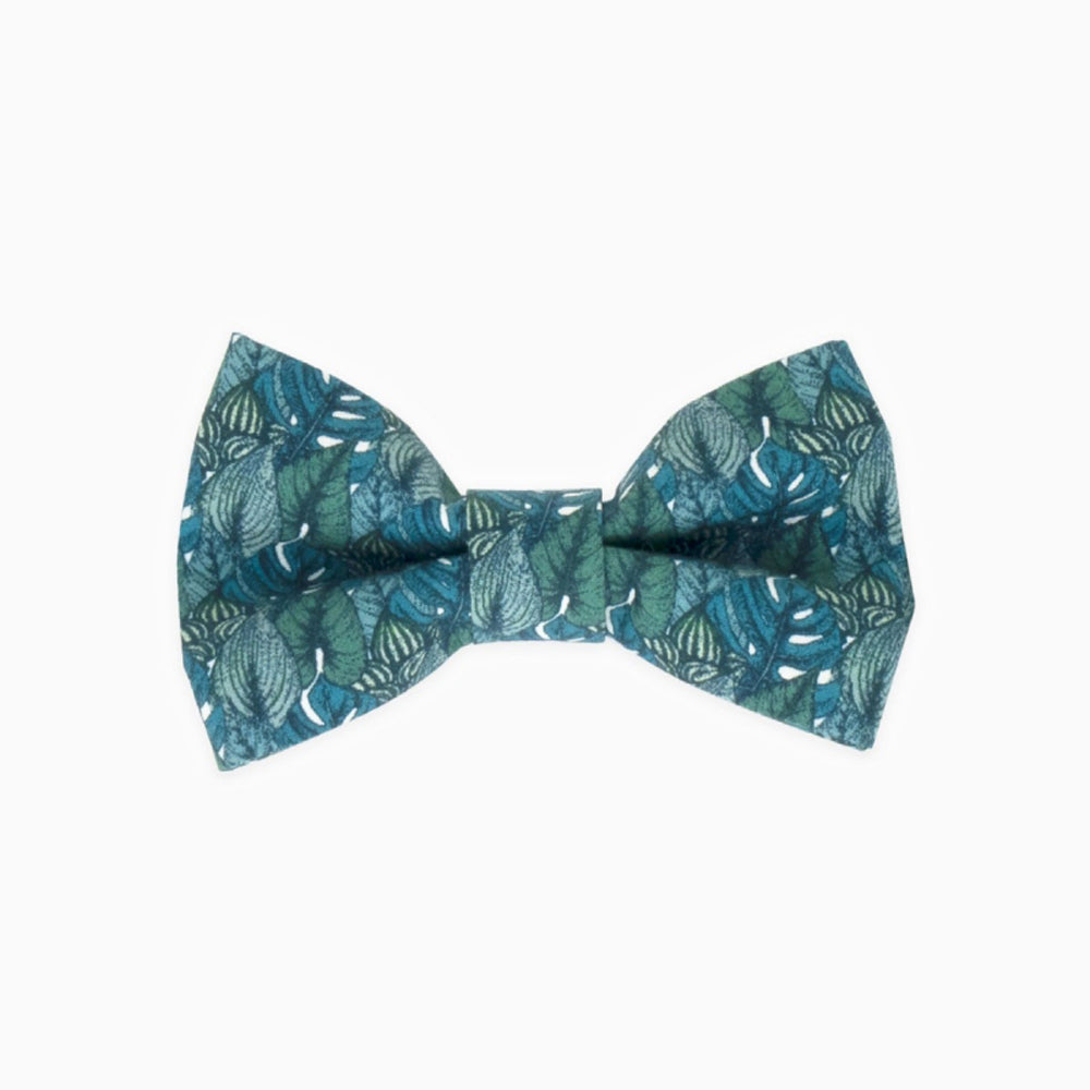Monstera Bow Tie