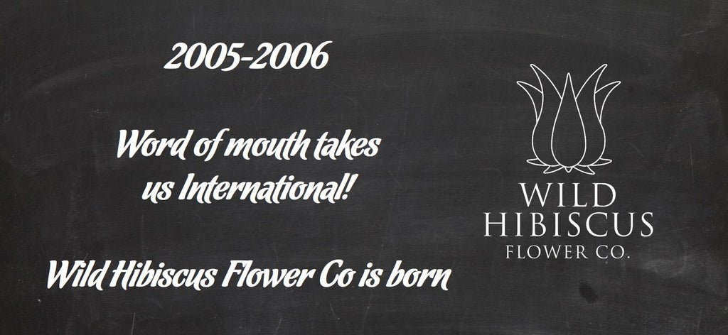 2005-2006 Wild Hibiscus Flower Company is Born