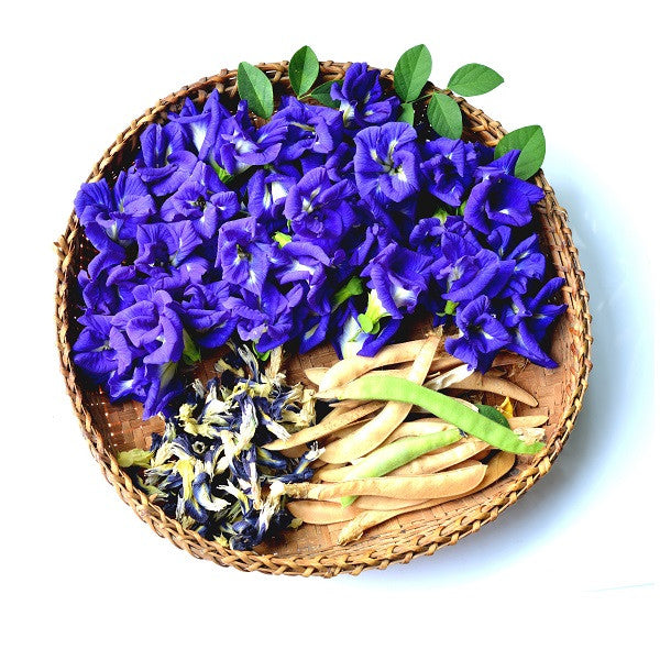Butterfly Pea Flowers Dried Bulk Wild Hibiscus Flower Company