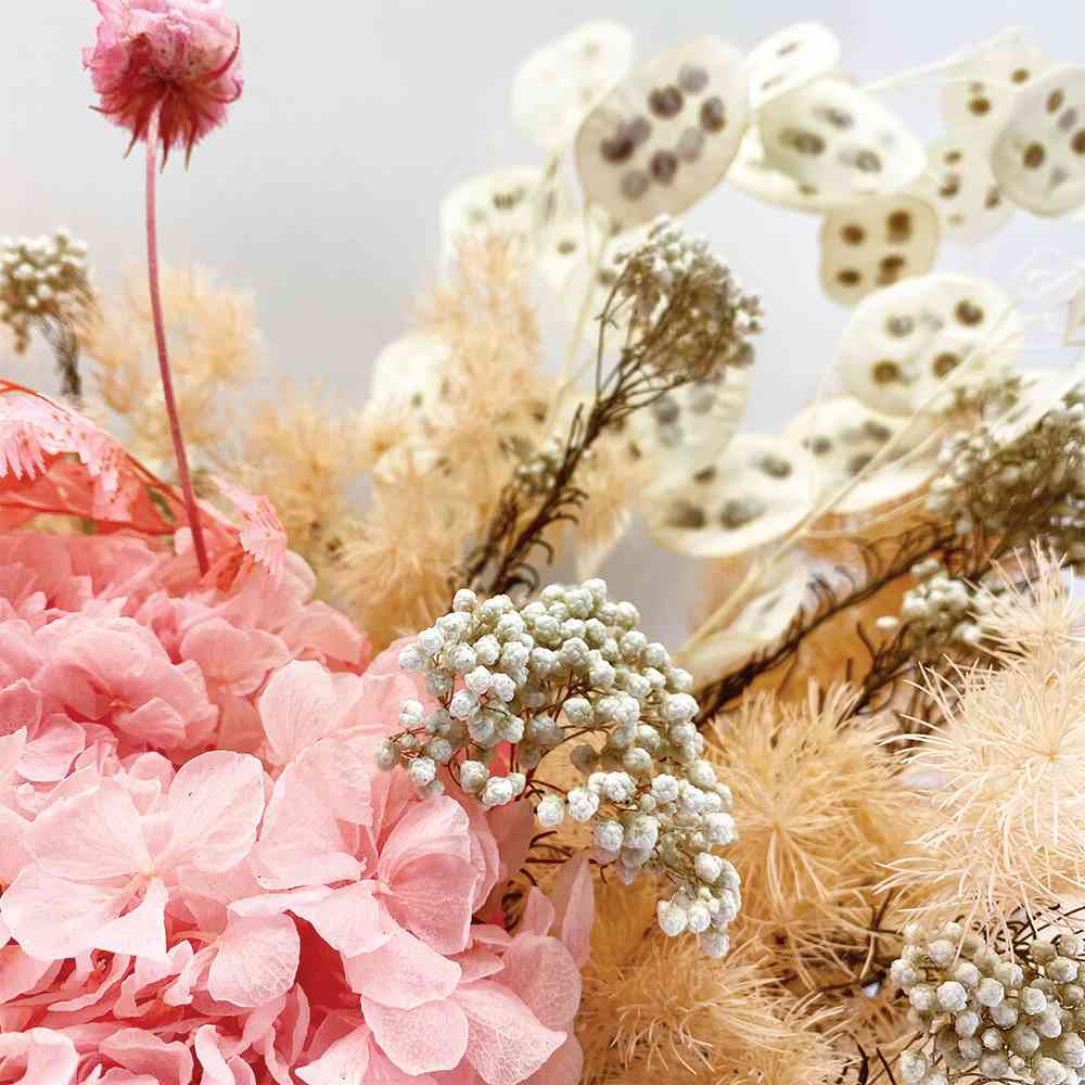 DRIED FLOWERS: Marshmallow Pink