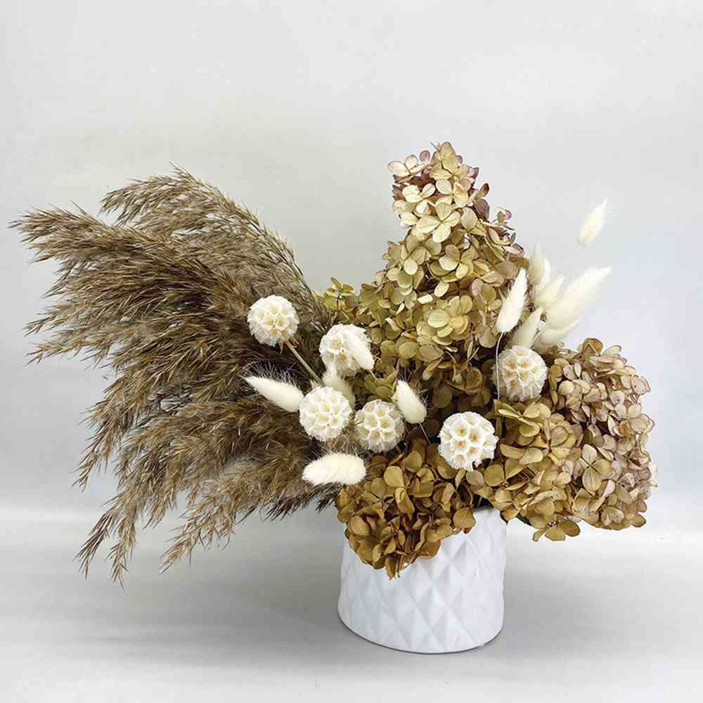 DRIED FLOWERS: Natural Beauty