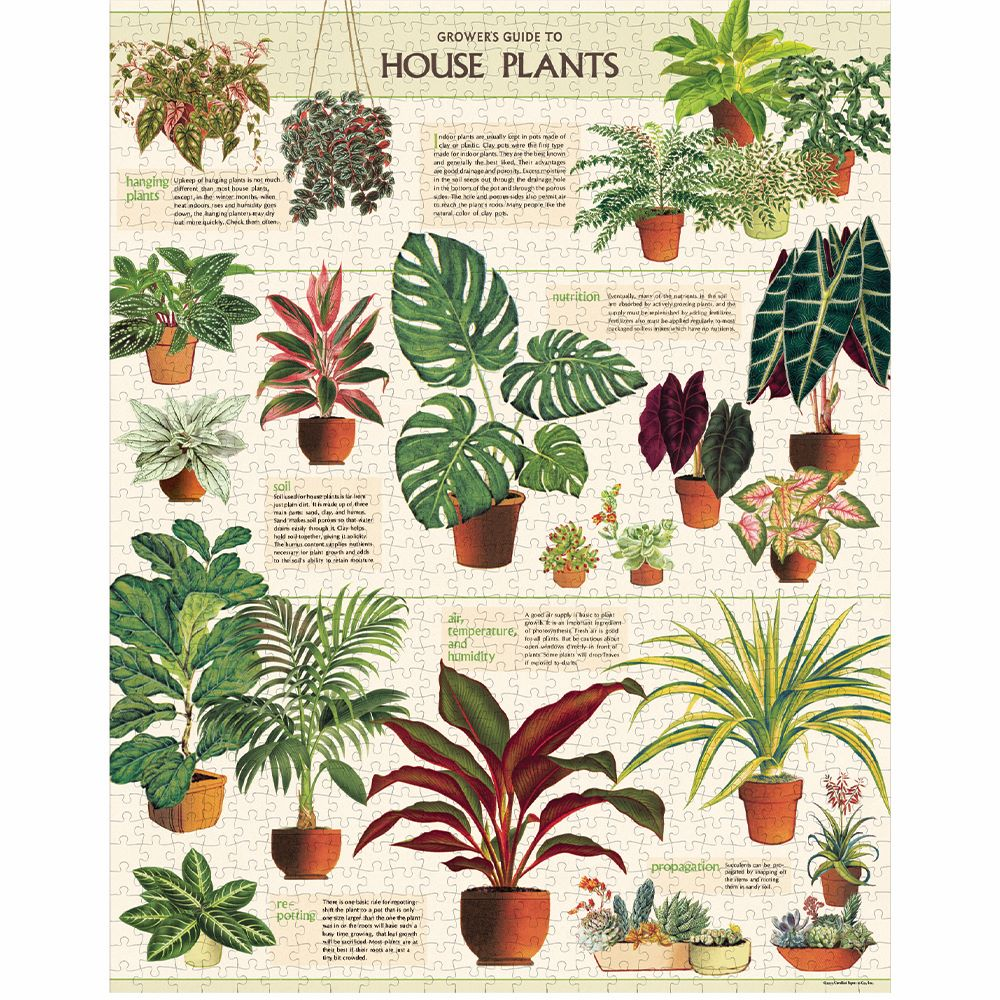 CAVALLINI & CO: Vintage Puzzle - House Plants