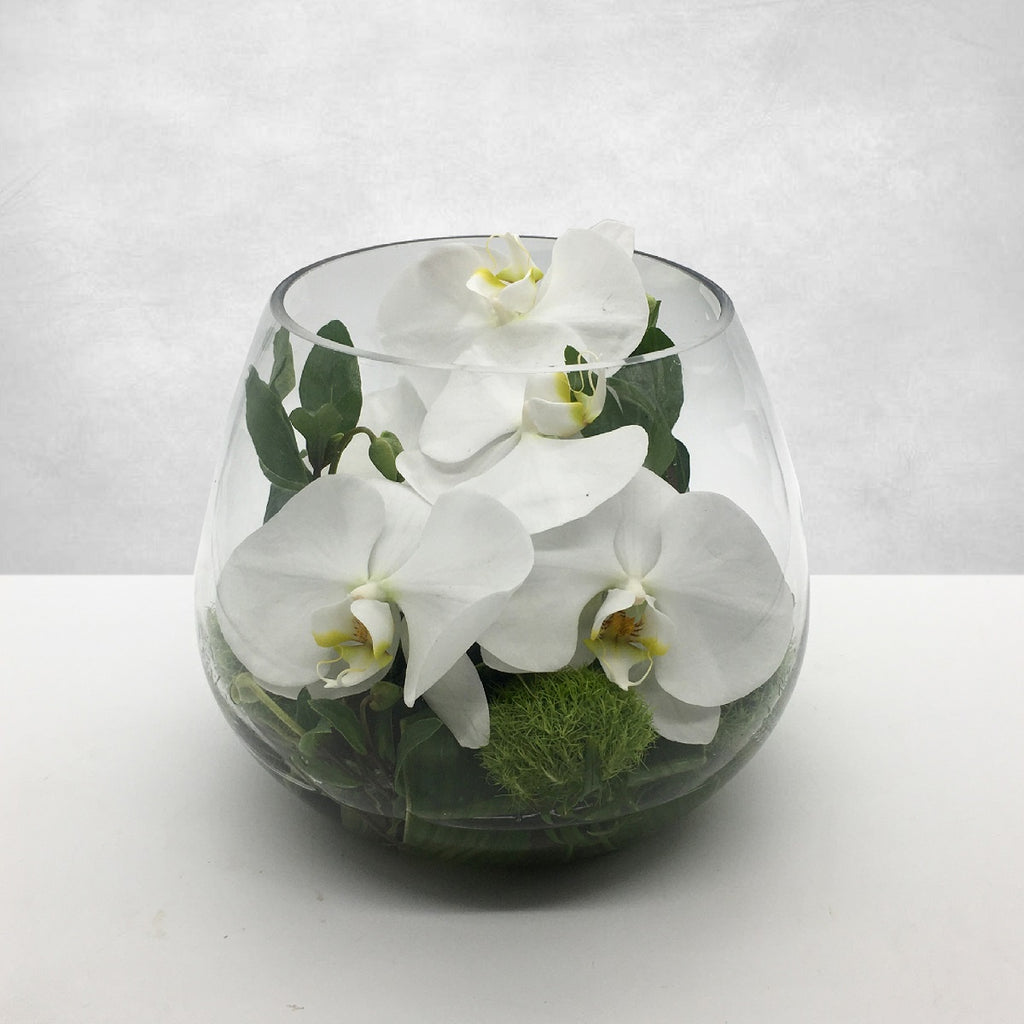 PHALLY BOWL: White