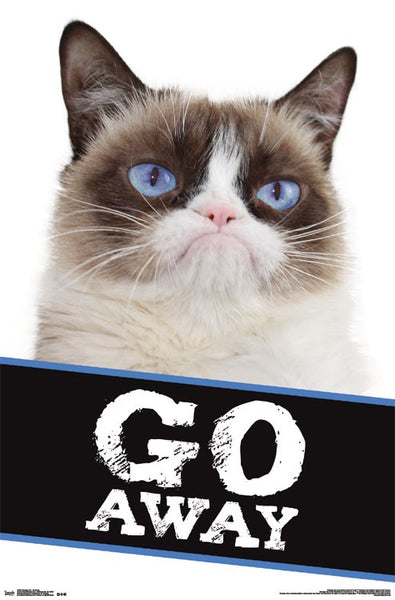 Grumpy Cat Go Away poster