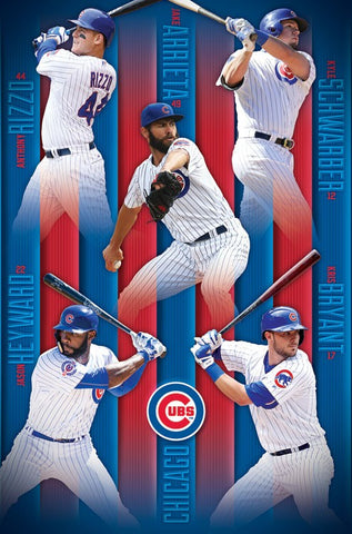 Chicago Cubs Team Group poster