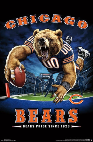 Wall Poster  - Chicago Bears End Zone